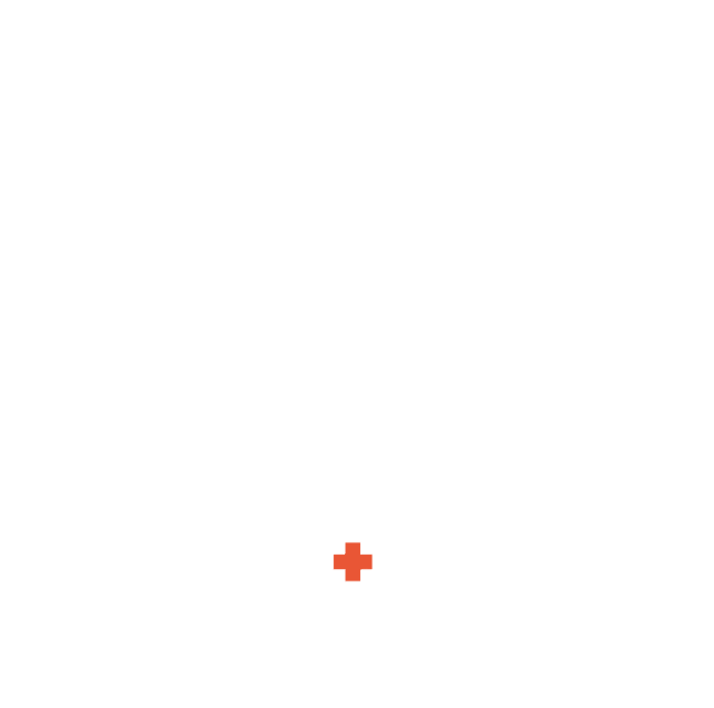 BIG HEART BIG HANDS